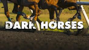 Dark Horses thumbnail
