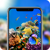 Underwater World Sea Fish Video Live Wallpaper Android APK Download Free By BND Develop Inc
