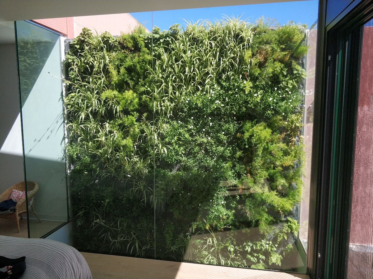 Estado del jardín de San juan de Alicante