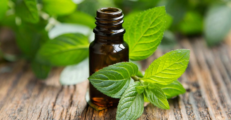 DIY Peppermint Essential Oil At Home [Recipe]