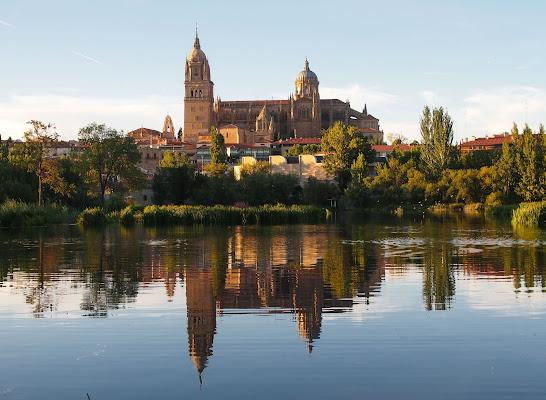 Cattedrale di Salamanca (Spagna) di robypsycho