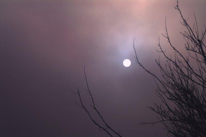Sole nella Nebbia di MaoCesa