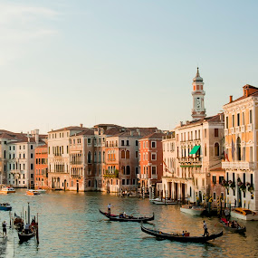 Grand Canal by Robert Little - City,  Street & Park  Historic Districts ( waterscape, boats, grand canal, buildings, venice, gondelas )