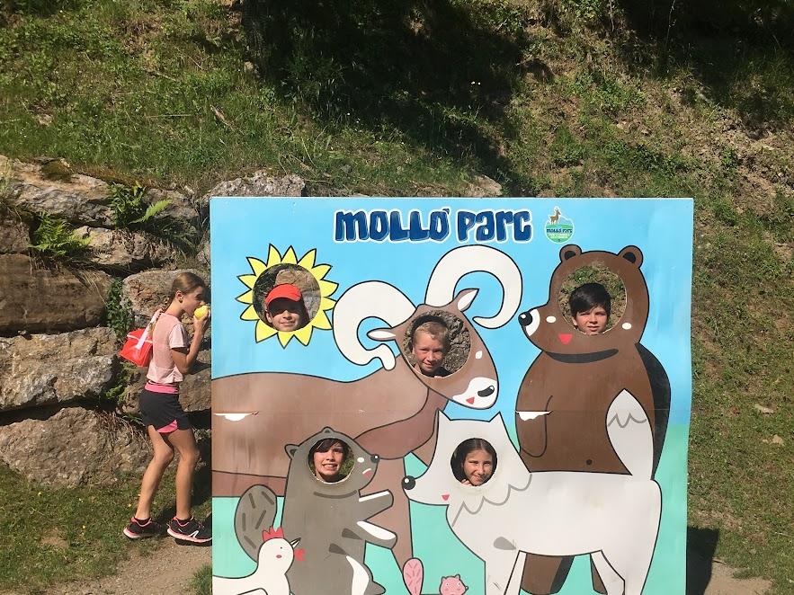 CM d'excursió a Molló Park