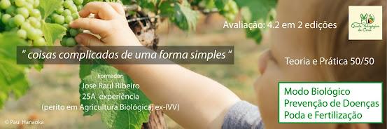 Viticultura Biológica e Poda de Videiras 3ª edição – 1 Dez 2020