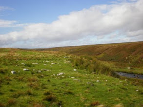 Photo: PW - From Tan Hill to Middleton in Teesdale: Sleightholme Beck