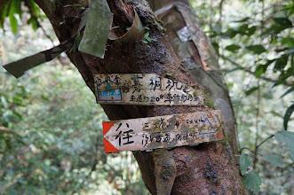 Photo: 路標上寫著一個很特殊的地名「肉板峠」,有人說峠是日本造字,不過維基裡面卻說這是中國「卡」的古字。我只知道中文維基裡面的說明指它是「山頂」之意完全是個大錯誤!其實峠是指道路的最高點,也就是我們一般稱為「嶺」的地方,當然那有可能是無名小山頭的頂,不過大多數會是在「鞍部」,一般爬山越嶺點就是峠。那肉板峠是日據時代遺留的地名,沿用至今多數以「卡」字代替,有機會我也要去走走那汐平古道。