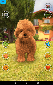 Talking Teddy Dog screenshot 4