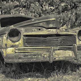 vintage classic by Randall Langenhoven - Transportation Automobiles