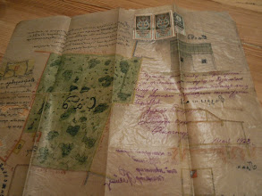 Photo: план дачного участка на Приорке от Е.В.Шипович