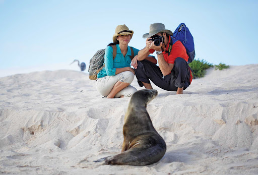 Celebrity-Xpedition-couple-with-sea-lion - Marine life in the Galapagos have no fear of humans, giving photographers the chance to capture great close-ups.