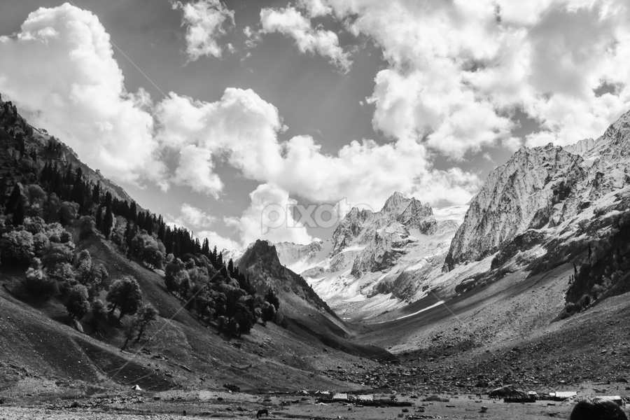Himalayas, up close and personal by Ajay Sood - Landscapes Mountains & Hills ( sonamarg, sood, photo images from india, pwcbwlandscapes, travel, landscape, mountains, autumn, ajay, ajay sood, kashmir, india, travelure )