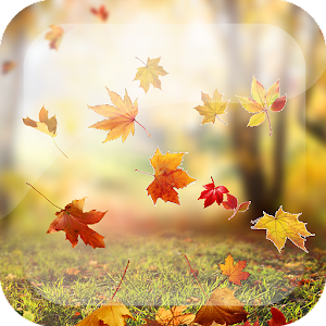 Falling Leaves Wallpaper - Android Apps on Google Play
