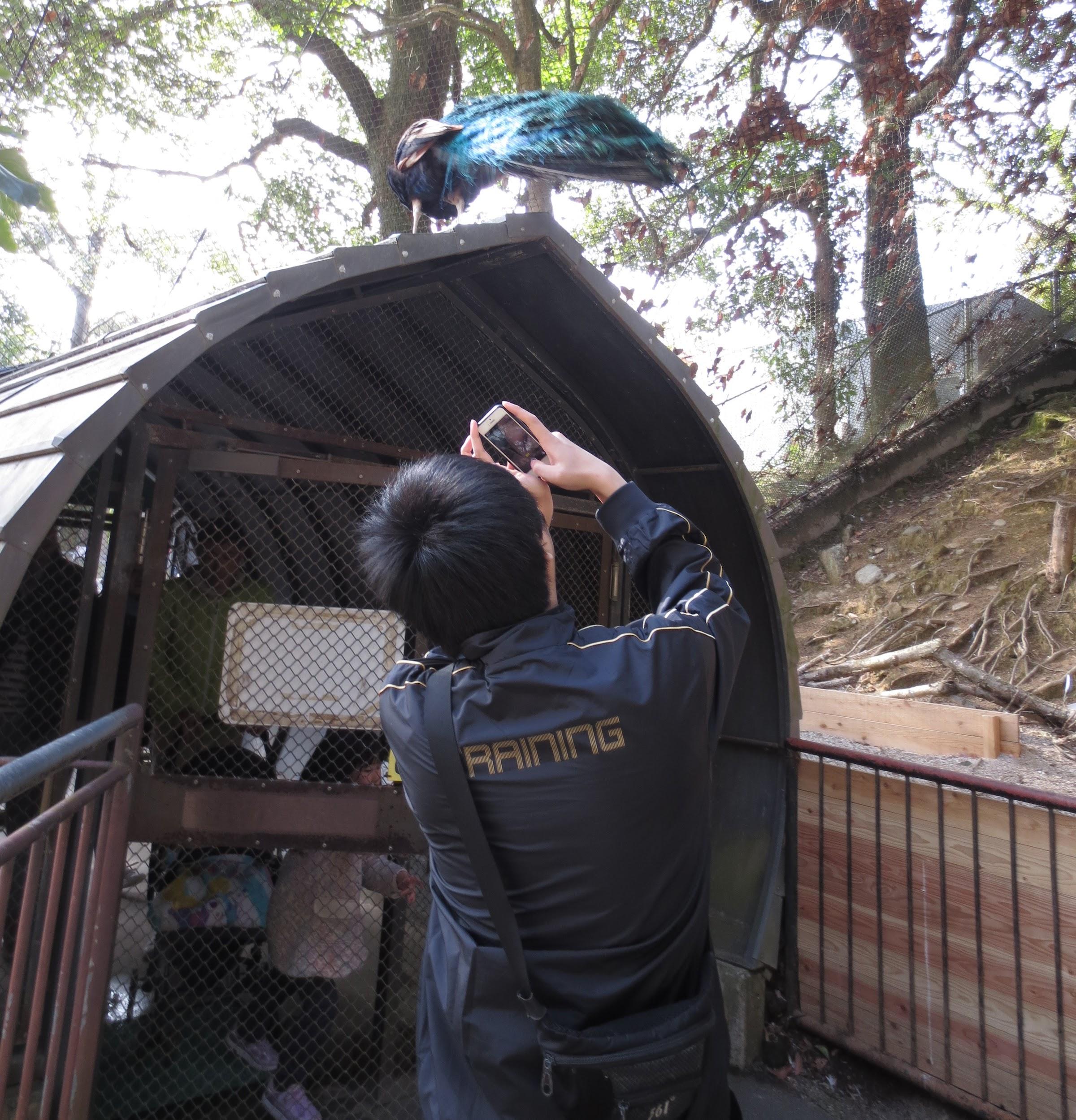 大牟田市動物園16