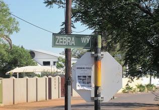 Photo: Zebra Way (in books Zebra Drive)
