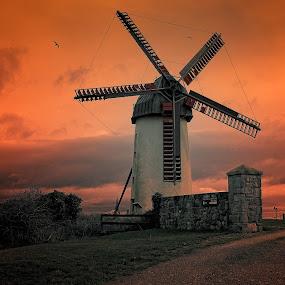 skerries mill by Paul Holmes - City,  Street & Park  Vistas