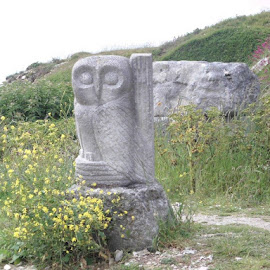 owl sculpture by Stephanie Betts - Buildings & Architecture Statues & Monuments