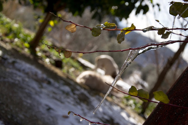 Winter di Photo Raf