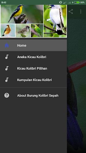 Download Kicau Burung Kolibri Sepah Raja Apk Latest Version App By Argendon Droids For Android Devices