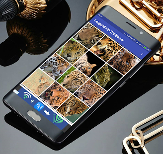 Leopard HD Wallpaper - náhled