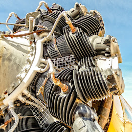 Engine by Richard Michael Lingo - Artistic Objects Other Objects ( artistic objects, engine, closeup, arizona, airplane )