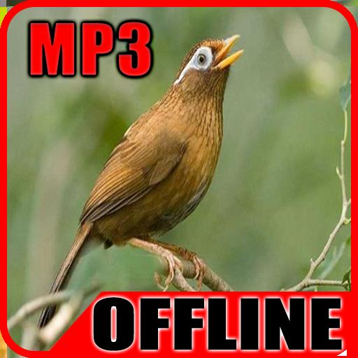 Suara Burung Wambi Gacor Offline 1 0 Apk Download Com Burungwambi Suara Kicau Apk Free