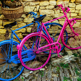 Pink & Blue  by Igor Modric - Transportation Bicycles (  )