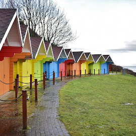 Colourful beach huts after the rain  by Eloise Rawling - Buildings & Architecture Other Exteriors ( colourful, beach huts, wet,  )