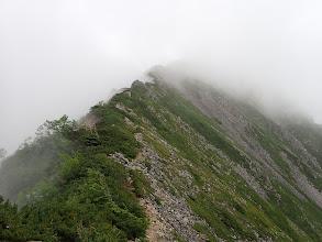 稜線沿いの道を進む