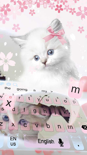 Cute Pink Kitty cat Keyboard for PC