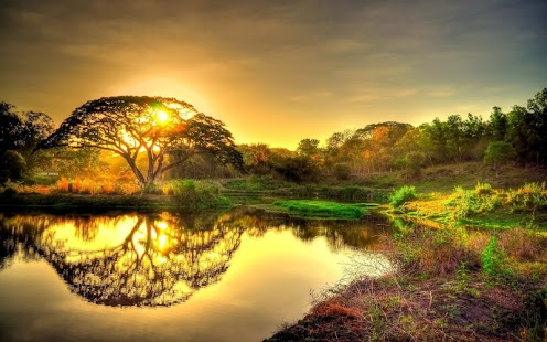 Nature Wallpaper HD Background Android Apps on Google Play