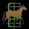 Dressage Lite for horse riders icon