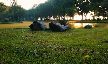 Photo: The Lake amidst the greenery