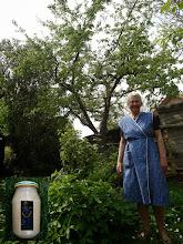 Photo: Mevr. Zwijnenburg voor haar 70 jaar oude Goudrenet, links zelfgemaakte appelmoes(de boom is weg 2016)
