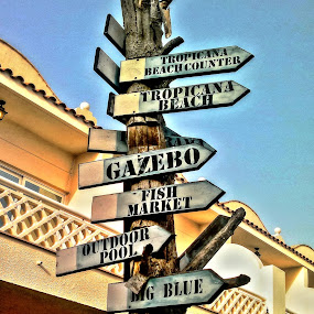 The Way by Rodolfo Dela Cruz - Products & Objects Signs ( sign, outdoor, way, summer, beach )