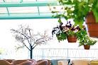 Фото №10 зала Монтана на Молодежном проспекте