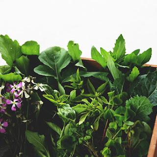 Garden Pesto