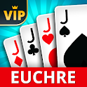 Euchre Offline - Single Player Card Game icon
