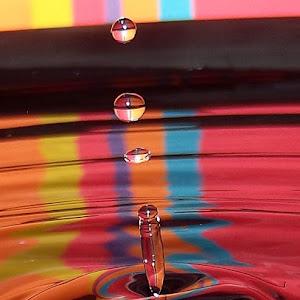 drops Jan 20 2012f110.jpg