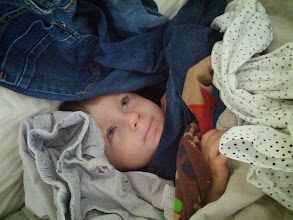 Photo: Finn After Laundry Bombs