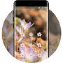 Flower theme early spring space interstellar APK icon