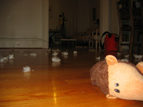Photo: the death of hedgehogius