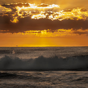 A New Day by Trish Beukers - Landscapes Sunsets & Sunrises ( work of h'art photography )