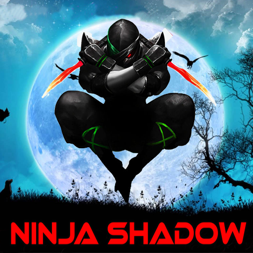 Ninja Warrior Shadow Fight