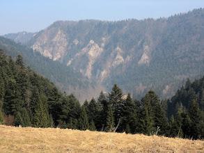 Photo: 10.Sedlo Cerla (610 m). Facimiech (668 m) wygląda stąd bardzo zacnie.