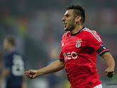 Valence suit attentivement Salvio