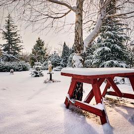by Silviu Zlot - City,  Street & Park  City Parks