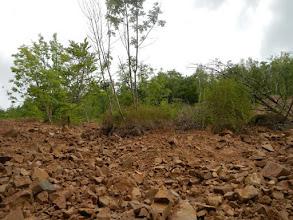 Photo: Velký ostřel na pravém svahu - včetně celých ostrůvků zeleně (stav 14.7. 2012)