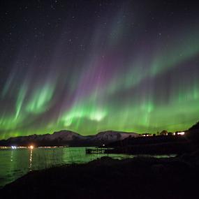 Aurora Borealis by Yvonne Reinholdtsen - Novices Only Landscapes ( canon, aurora borealis, night, norway )