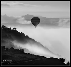 Photo: Balloon in the Mist. picture of yesterday morning.
